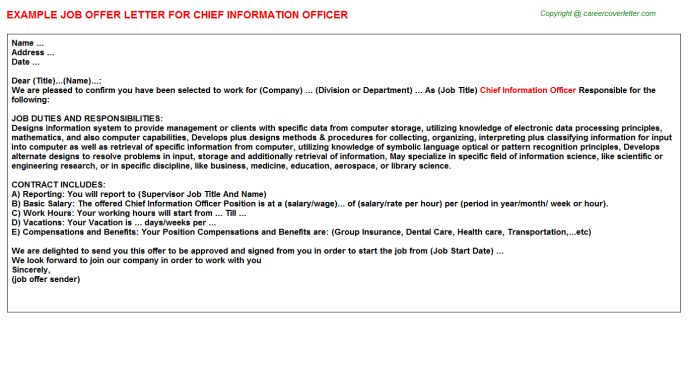 Chief Information Officer Offer Letter Template
