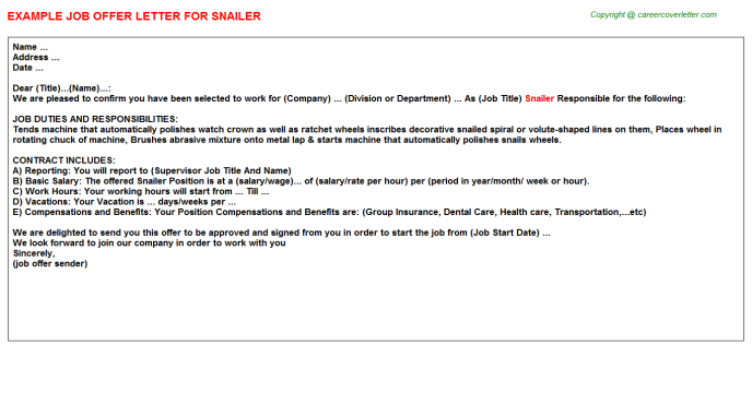 Snailer Job Offer Letter Template