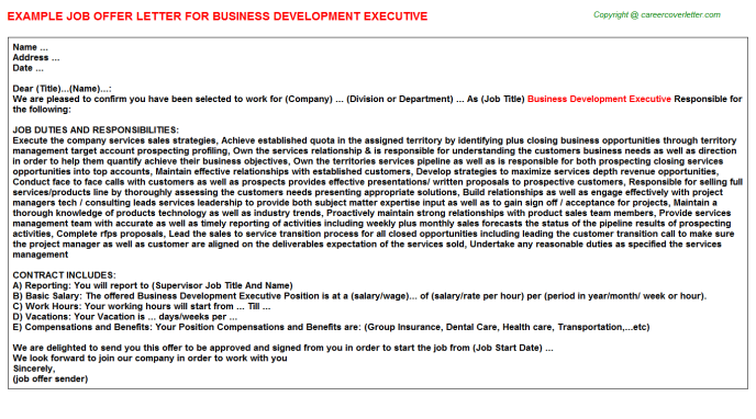 Business Development Executive Offer Letter Template