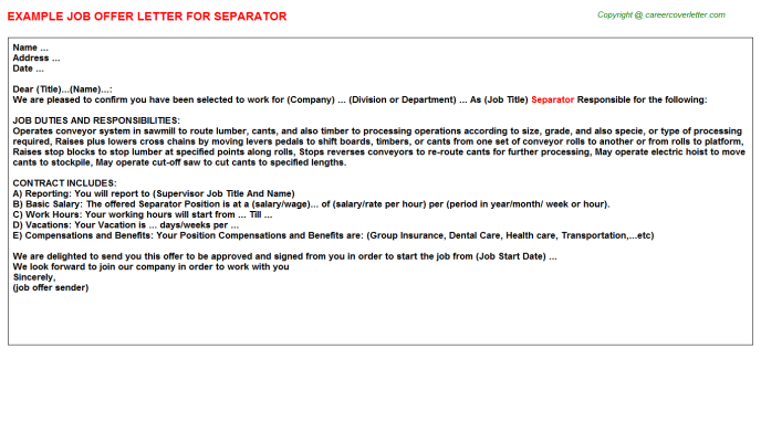 Separator Job Offer Letter Template