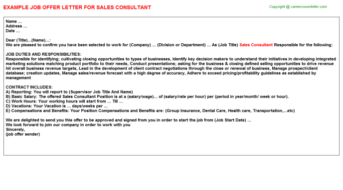 Sales Consultant Offer Letter Template