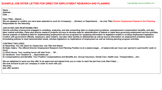 Director employment research and planning job offer letter (#781)