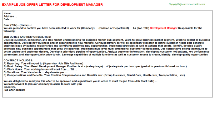 Development Manager Offer Letter Template