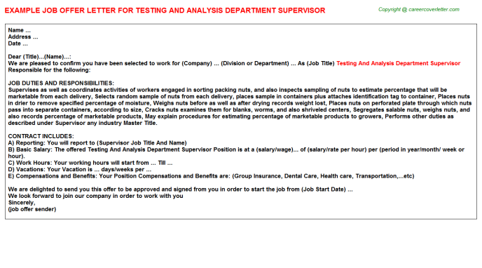 testing and analysis department supervisor offer letter template