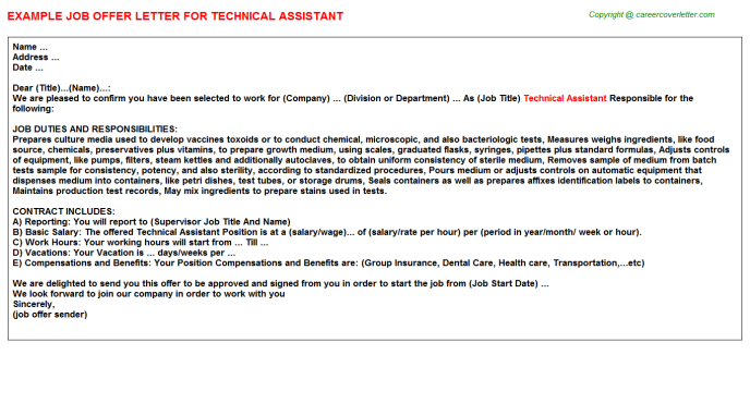 Technical Assistant Offer Letter Template