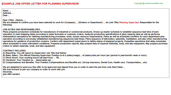 Planning Supervisor Job Offer Letter Template