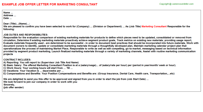 Marketing Consultant Offer Letter Template