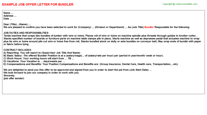 Bundler Job Offer Letter Template
