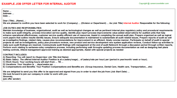 Internal Auditor Offer Letter Template