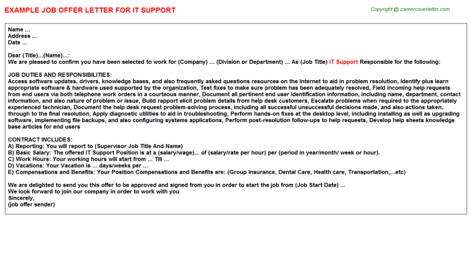 IT Support Offer Letter Template