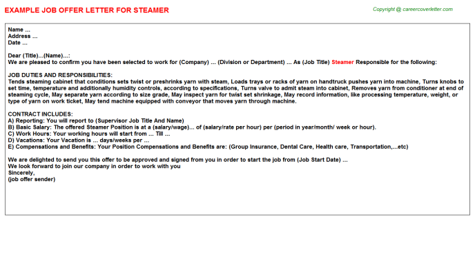Steamer Offer Letter Template