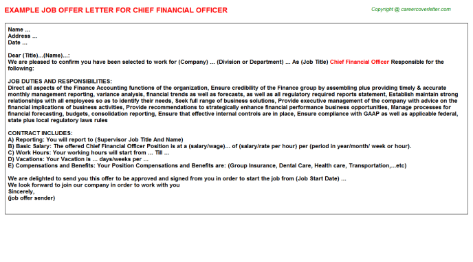 Chief Financial Officer Job Offer Letter Offer Letters