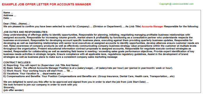 Accounts Manager Offer Letter Template