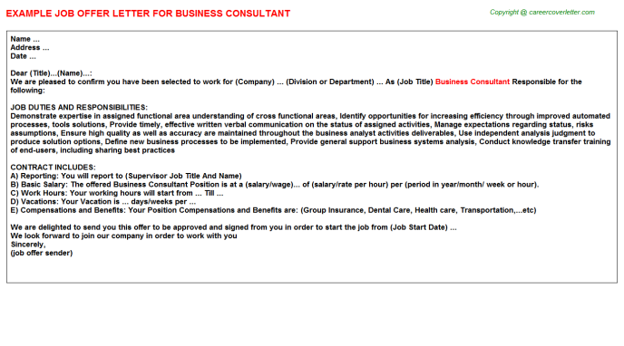 Business Consultant Offer Letter Template