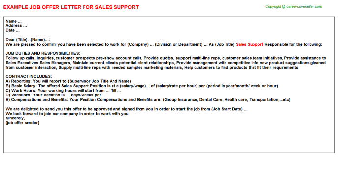 Sales Support Offer Letter Template