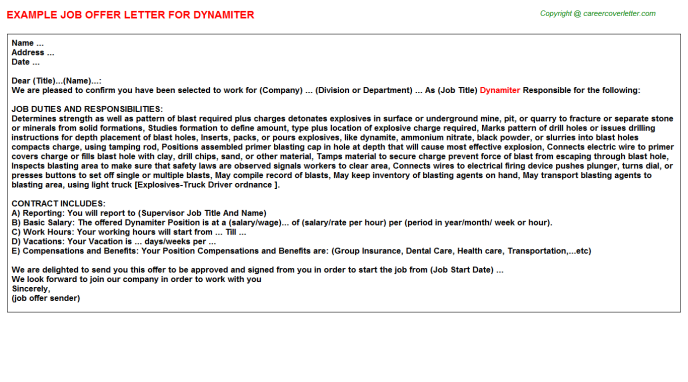 Dynamiter Job Offer Letter Template
