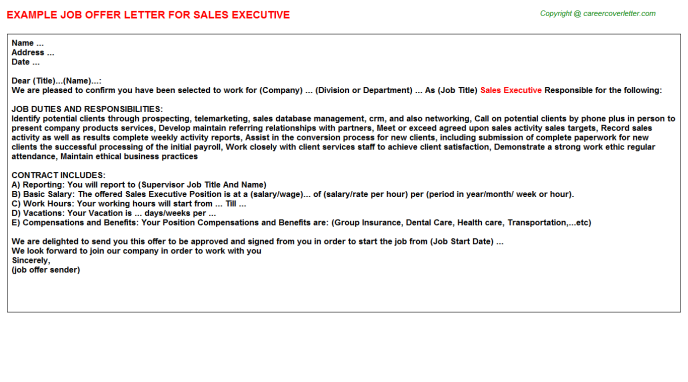 Sales Executive Offer Letter Template
