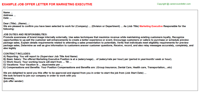 Marketing Executive Offer Letter Template