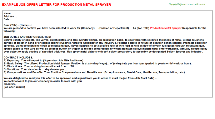production metal sprayer offer letter template