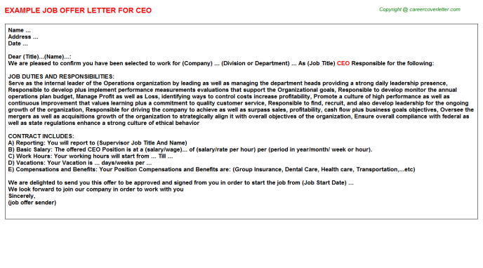ceo offer letter