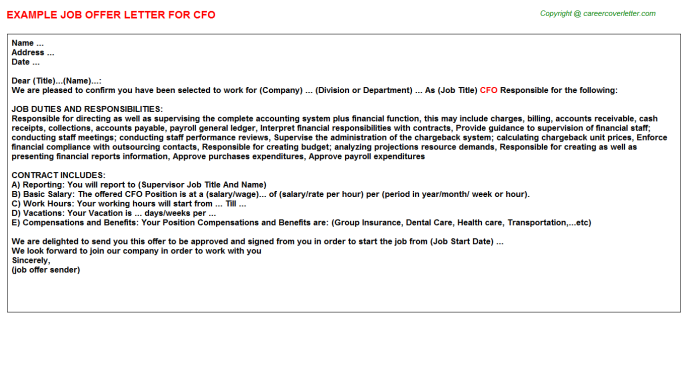 CFO Offer Letter Template
