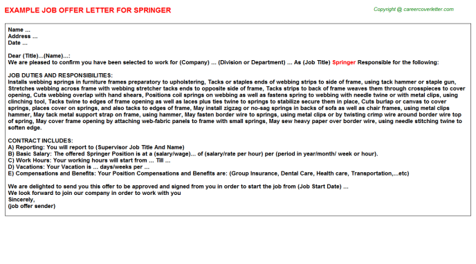 Springer Job Offer Letter Template