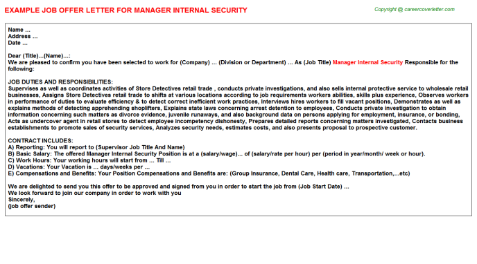 Manager Internal Security Offer Letter Template