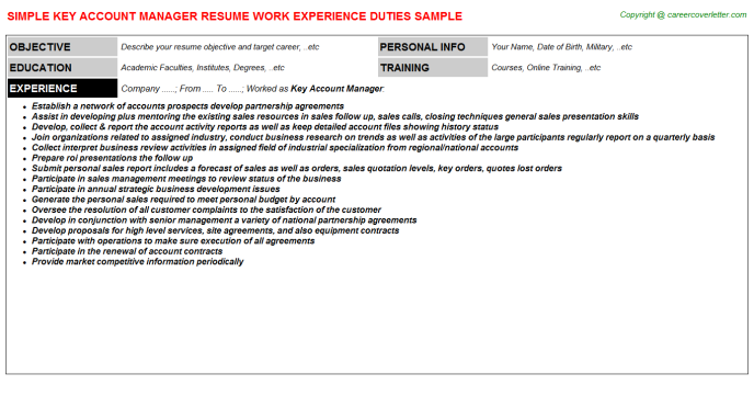 Key Account Manager Resume Sample Template