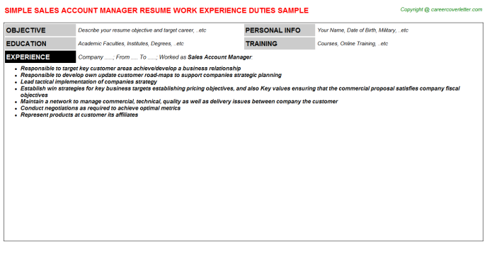 Sales Account Manager Resume Sample Template