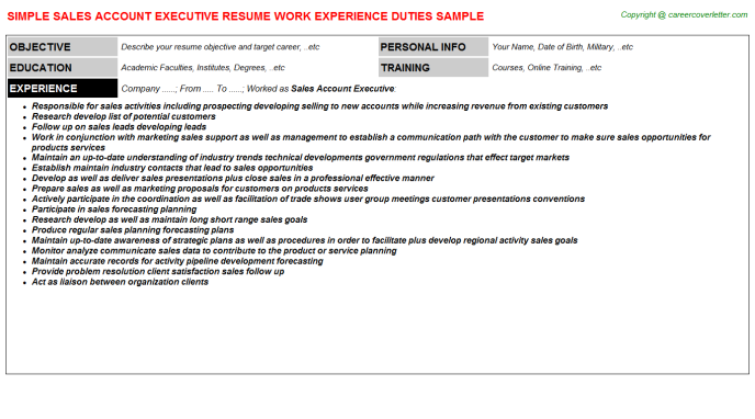 Sales Account Executive Resume Template