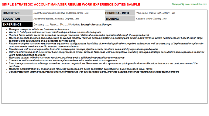 Strategic Account Manager Resume Template