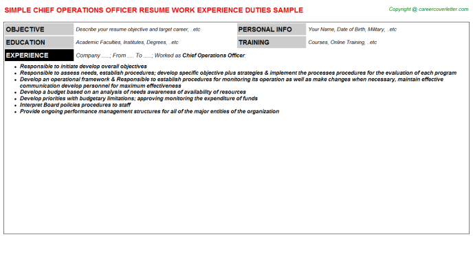 Chief Operations Officer Resume Sample Template