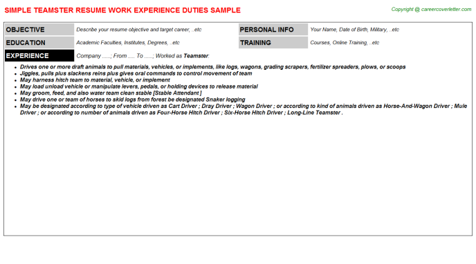 Teamster Job Resume Template