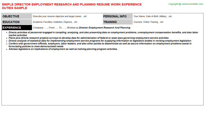 Director Employment Research And Planning Resume Template