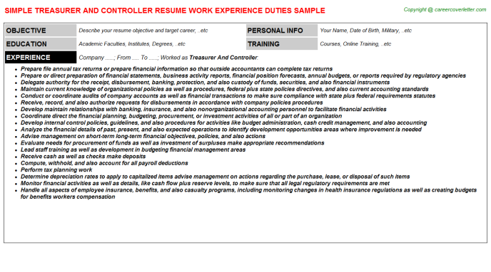 Treasurer And Controller Resume Template