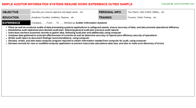 auditor information systems resume template