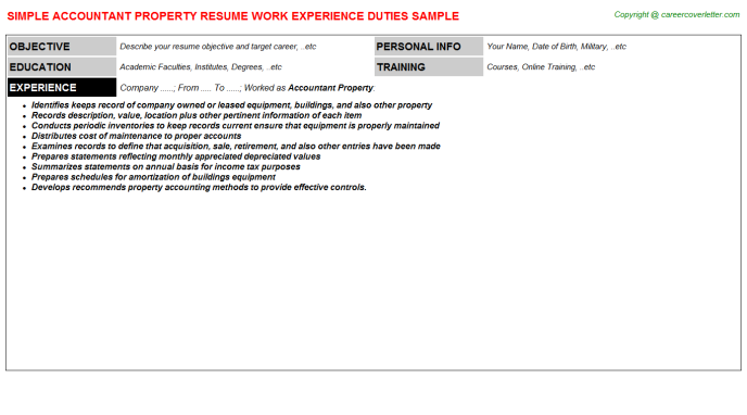 Accountant Property Resume Template