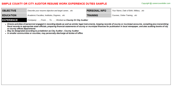 county or city auditor resume template