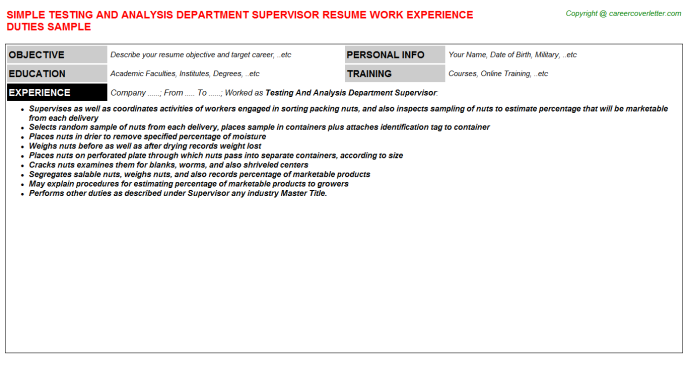 testing and analysis department supervisor resume template