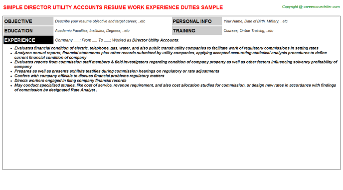 Director Utility Accounts Resume Template