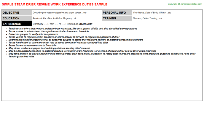 steam drier resume template