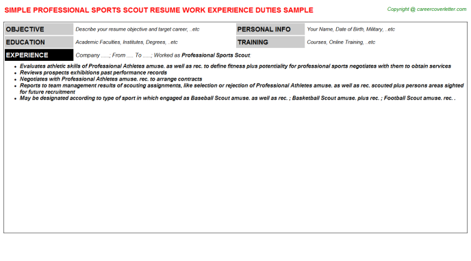 Professional Sports Scout Resume Template