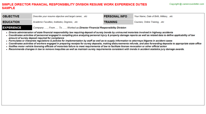 director financial responsibility division resume template