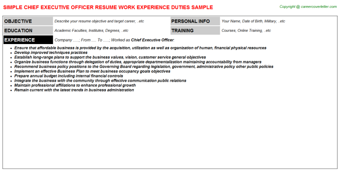 Chief Executive Officer Resume Sample Template