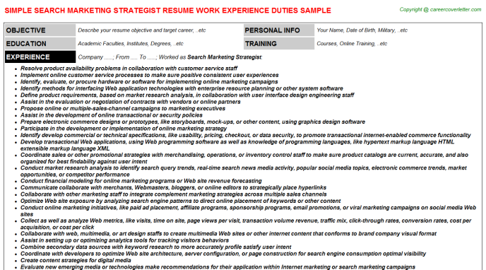 Search Marketing Strategist Resume Template