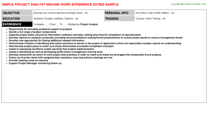 Project Analyst Job Resume Template