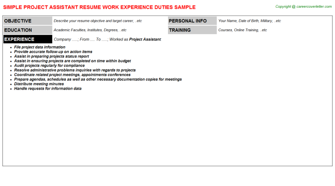 Project Assistant Job Resume Template
