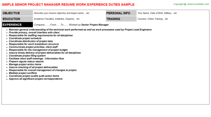 Senior Project Manager Resume Sample Template