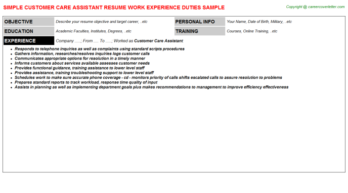 Customer Care Assistant Resume Template