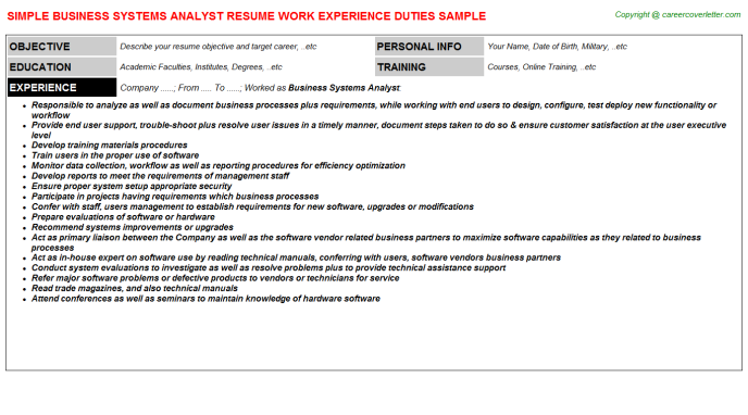 Business Systems Analyst Resume Sample Template